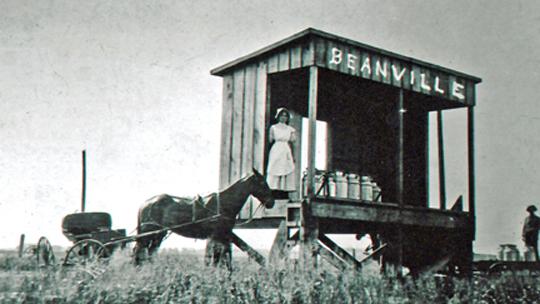 Beanville LR.jpg