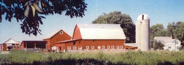 Stoneman barn wide.jpg
