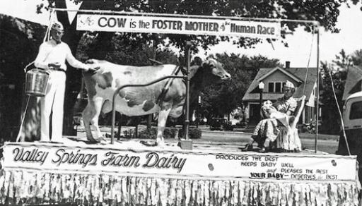 Valey Springs Farm